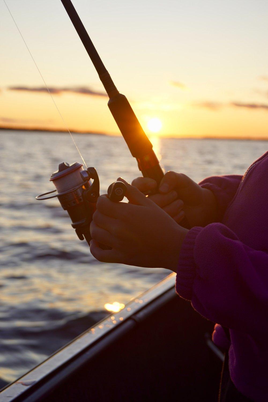 Fiskestænger - hvilken type skal du vælge?